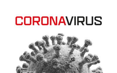 FREE Coronavirus Lesson – Update
